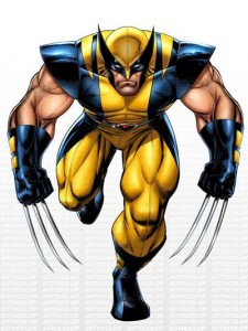 Wolverine - Days of Future Past